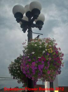 Downtown Alexandria Flower Baskets