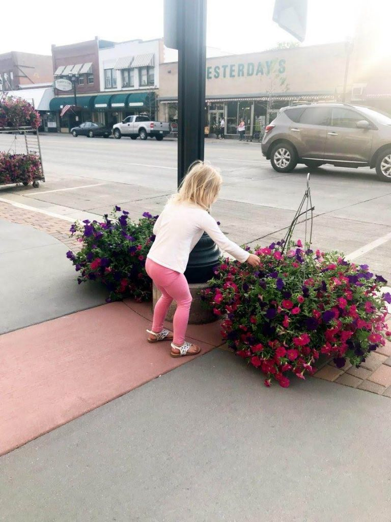 Flower Baskets Downtown Alexandria 2018